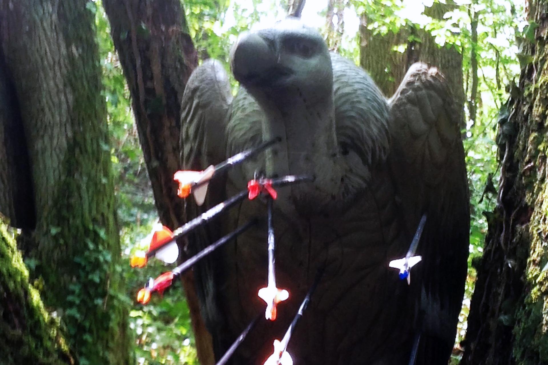 aigle-3d
