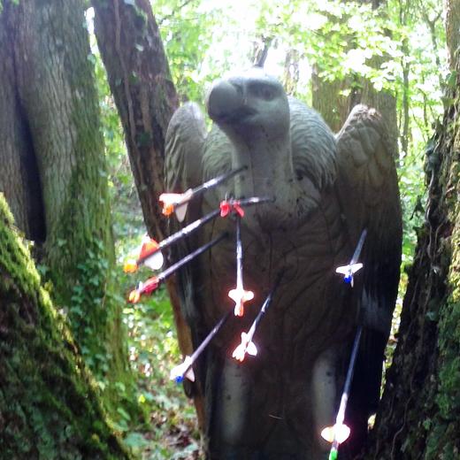 https://archers-la-croix-en-touraine.fr/wp-content/uploads/2020/11/520x520-TEAM-3D.jpg